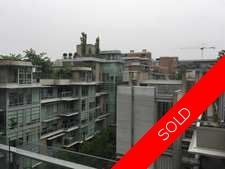 False Creek Condo for sale:  1 bedroom 506 sq.ft. (Listed 2017-05-20)